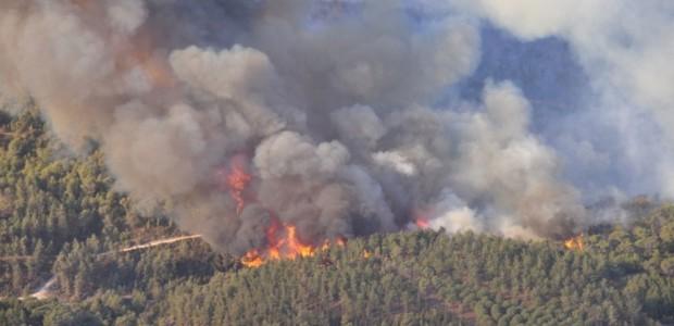 Image result for Incendios recientes en la Cordillera Central dominicana