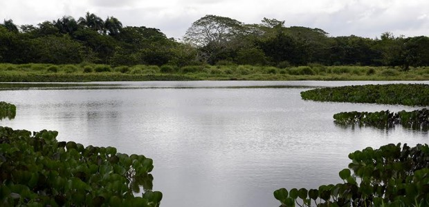 YAMASA.- El Ministerio de Medio Ambiente y Recursos Naturales desarrollará […]