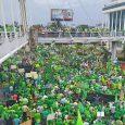 Santo Domingo, 16 jul (EFE).- Miles de personas marcharon hoy […]