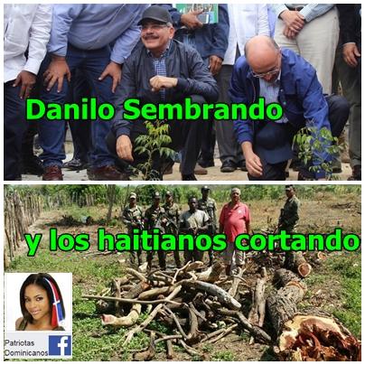 Y COMO NOS SALVAMOS!! Danilo y Medio Ambiente Sembrando y los Haitianos Cortando y Quemando