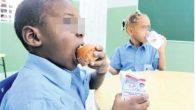 PANAMÁ,- República Dominicana redujo el hambre desde 2006 al 2017, […]