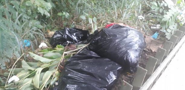 Carolina Pichardo Santo Domingo En cinco fundas plásticas fueron encontradas […]