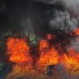La Procuraduría General de la República (PGR) incineró más de […]