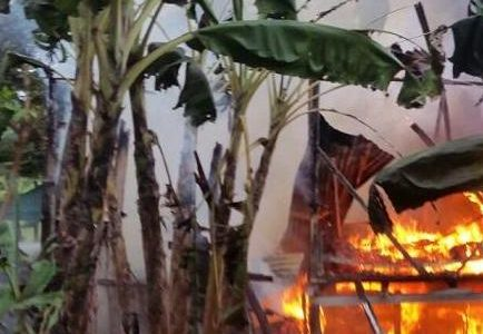 PEDERNALES.-El ministerio de medio ambiente incendio decenas de casas de […]
