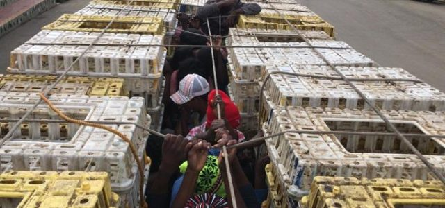 Al menos 20 indocumentados haitianos fueron apresados por miembros del […]