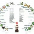 Hay cientos de productos para la salud en el mercado que dicen ser los secretos para una buena salud y bienestar. Con tantas opciones, puede ser difícil saber cuáles son […]