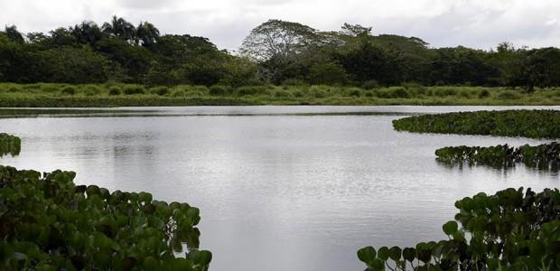 Spread the love YAMASA.- El Ministerio de Medio Ambiente y Recursos Naturales desarrollará desde este viernes y hasta el domingo un amplio cronograma de actividades con motivo de celebrarse el […]