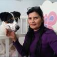 Sara Morán es una mujer de Chorrillos, Lima, Perú. Hace años su mejor amigo fue envenenado. Pero lo que ella decidió hacer a partir de entonces es algo tan fuera […]
